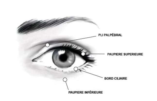 Risques de la blépharoplastie classique à Paris 8 - Dr Hayot